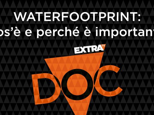 Water footprint: cos'è e perché è importante – Doc